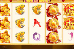 Fortune House Slot